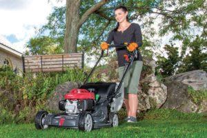 Honda lawn mowers dealer Newmarket